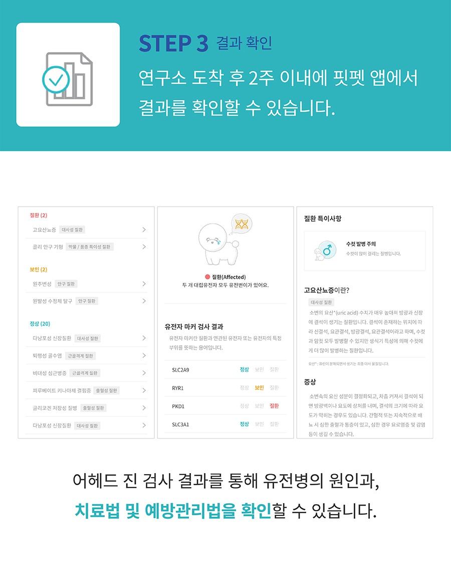핏펫 어헤드 진 유전병 검사 키트-상품이미지-8